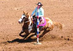 Cadiz Record - RODEO Trigg girls ride their way to rodeo glory Pole Bending, Cadiz, Rodeo, Horses, Animals, Painting, Girls, Animales, Little Girls