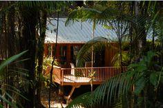 Berg en Dal comfortable resort in the jungle-in Suriname - Orange Travel