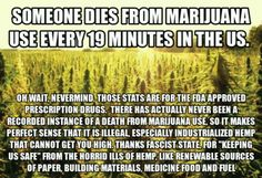 #Marijuana Truth there has never been a recorded instance of death from #marijuana use.