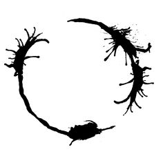 You Have Choose Life.   Arrival-Movie-Live-Coding/YouHaveChooseLife1.jpg at master · WolframResearch/Arrival-Movie-Live-Coding · GitHub