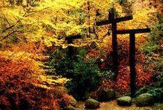 The Prayer Garden at Kanaan - The Evangelical Sisterhood of Mary, Darmstadt, Germany.