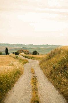 Country road (Tuscany, Italy)