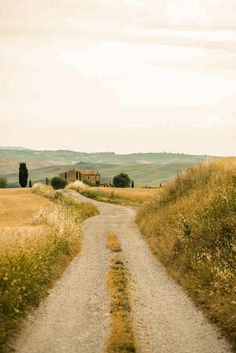 Country road (Tuscany, Italy)
