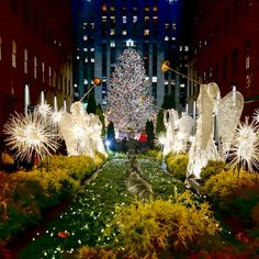 Covering the Bases | Fashion and Travel Blog New York City: Top 10 Things to do in New York City this Christmas