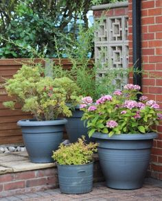 Outside flower posts - Kerb Appeal - may borrow some of parents' pots when we are selling to brighten up the gravel area!