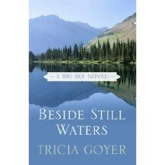The hardback, big print addition of Beside Still Waters, Amish novel #1