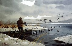In this Les Kouba print a large group of bluebills swoop down right next to a hunter's boat not knowing what their in for. Hunting Art, Duck Hunting, Hunting Stuff, Wildlife Paintings, Wildlife Art, Duck Pictures, Hunting Tattoos, Duck Art, Waterfowl Hunting