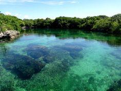 El agua transparente