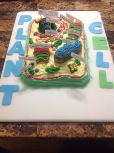 plant cell cake i m always wondering what to do with old project rh pinterest com Plant and Animal Cell Cake Projects Cell Model Cake