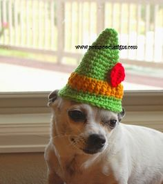 Mini Elf And Santa Hats Crochet Pattern By Sara Sach of Posh Pooch Designs Are you ready for Christmas? And Christmas Pictures? Crochet Dog Hat Free Pattern, Crochet Santa Hat, Knit Or Crochet, Cute Crochet, Crochet Patterns, Crochet Hats, Web Patterns, Crochet Sweaters, Crotchet