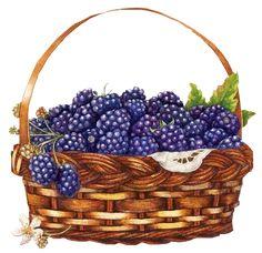 http://purplefolie.p.u.pic.centerblog.net/o/176b1bfb.png