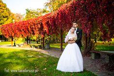 Zdjęcia ślubne Rzeszów, wedding photos, fotografia