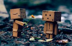 Danbo in love by Ibrahim  Alnassar, via 500px