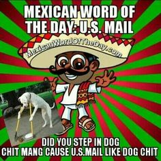 Mexican Word Of The Day Herbivore She Says I Got Her Pregnant But I Never Seen Herbivore - Funny Memes. The Funniest Memes worldwide for Birthdays, School, Cats, and Dank Memes - Meme Mexican Word Of Day, Mexican Words, Word Of The Day, Mexican Stuff, Funny Mexican Quotes, Mexican Memes, Mexican Sayings, Mexican Funny, Funny Sayings