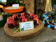 Dinosaur Birthday Party Ideas   Photo 2 of 24