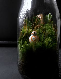 Star Wars Terrarium with BB-8 Episode VII Collectible Limited Edition by DoodleBirdie on Etsy https://www.etsy.com/listing/267025087/star-wars-terrarium-with-bb-8-episode