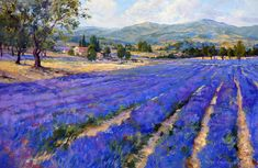 "Christine Lashley, Lavender Fields, oil, 24 x 36"""