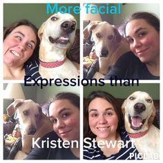More Facial expressions than kristen Stewart maggie dog