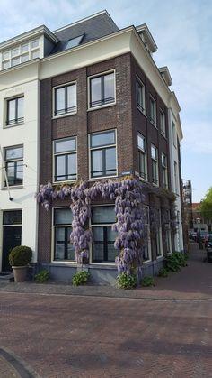Frankfurt, Multi Story Building, Mansions, House Styles, Home Decor, Decoration Home, Manor Houses, Room Decor, Villas