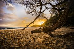 Beached by Tristan O'Tierney on 500px