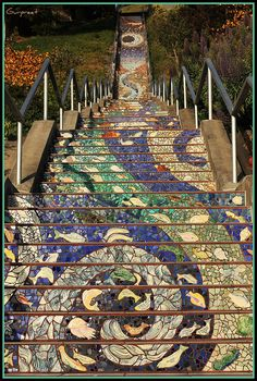 San Francisco: 16th Avenue tiled steps project