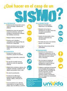 Infografía: ¿Qué hacer en el caso de un sismo? | Bienestar Institucional