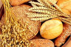 What's wrong with eating grains?