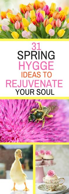 31 Spring Hygge Ideas to Rejuvenate Your Soul - enjoy the gifts the season has to offer!