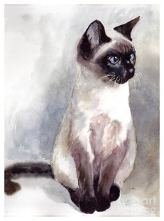 Siamese Cat Tattoos, Siamese Kittens, Cats And Kittens, Funny Kittens, Bengal Cats, White Kittens, Kitty Cats, Kitten Drawing, Black Cat Art