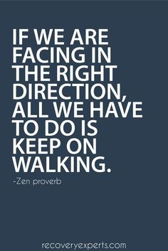 Motivational Quote: If we are facing in the right direction, all we have to do is keep on walking. – Zen proverb  Follow: https://www.pinterest.com/recoveryexpert?utm_content=buffer36492&utm_medium=social&utm_source=pinterest.com&utm_campaign=buffer https://recoveryexperts.com/?utm_content=buffer1ccc2&utm_medium=social&utm_source=pinterest.com&utm_campaign=buffer  #MediumMaria