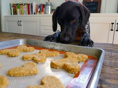 Foodist Approved: Huck's Healthy Homemade Dog Treats