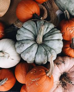 Discovered by Ali. Find images and videos about autumn, fall and Halloween on We Heart It - the app to get lost in what you love.