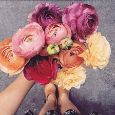@paigelikes pinterest / flowers.