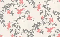 Wonderful Clematis (393026) - Brewers Wallpapers - A finely drawn clematis vine in dark grey metallic with coral pink flowers on a fresh white background.