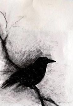 Blackbird on a branch - original charcoal drawing, abstract crow inch. I love charcoal art Drawing Sketches, Art Drawings, Pencil Drawings, Drawing Ideas, Arte Dark Souls, Illusion Kunst, Bird Art, Painting & Drawing, Amazing Art