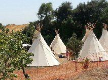 Campaments esplai 2013 a l´olivar. Ullastrell