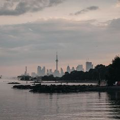A beautiful image of the Toronto skyline on a foggy day. A serene sunset that surrounds the CN Tower, one of Canada's most famous and iconic tourist attraction. Perfect image to use as a wallpaper for your phone. Toronto Skyline, New York Skyline, Beautiful Sunset, Beautiful Images, Toronto Photographers, Water Treatment, Perfect Image, Canada Travel, Cn Tower