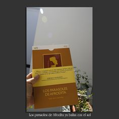 El cuarto claro (Sofía Serra): Los parasoles de Afrodita ya bailan con el sol