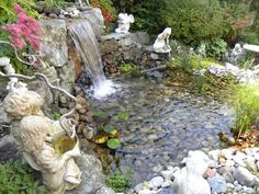 Water Features, Pools, Ponds, Fish pond, Water Fall, Parklane Nurseries