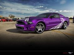 Purple mustang cobra.