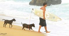 Surf with friends / surf con amigos