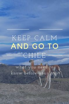 tips for trip to Chile #chile #travel #southamerica