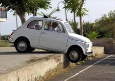 fiat500,,,,,,driving in Italy..I told you to read the signs!