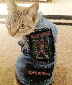 metal head kitty. iron maiden mini studded denim vest.    ROCK STYLE FASHION