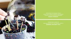 Black Licorice fish gravel display // recipes
