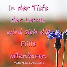 Walter Müller Kostenlose Hypnosen, Meditationen, Phantasiereisen www.youtube.com/user/walli2002 www.facebook.com/selbstfindungscoach
