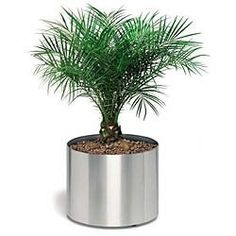 Rounded Planter On Wheels - Stainless Steel by Blomus Image