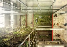 Concurso Green Acadey Competition youngarchitectscompetitions RENDER students italy  medellin green up