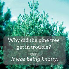 Gotta love nature humor. | Iowa DNR