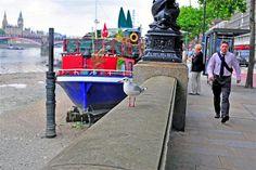 gull on river thames london
